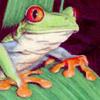 froggman's Avatar